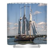 Peacemaker 2 Shower Curtain