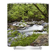 Peacful Places 2 Shower Curtain