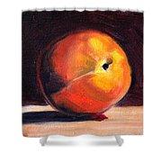 Peach 1 Shower Curtain