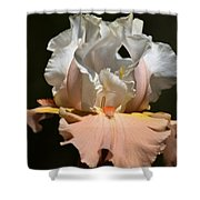Peach Elegance Shower Curtain