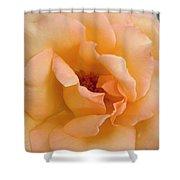 Peach Enchantment Shower Curtain
