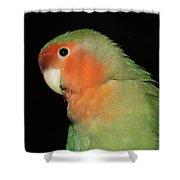 Peach Faced Lovebird Shower Curtain