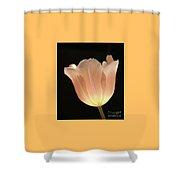 Peach Glow Shower Curtain