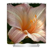 Peach Perfection Shower Curtain