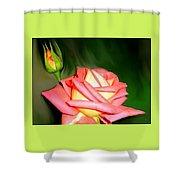 Peach Rose Watercolor Shower Curtain