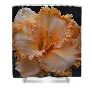 Peach Ruffled Lily Shower Curtain