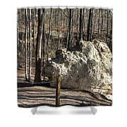 Peach Tree Rock-6 Shower Curtain