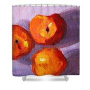 Peach Trio Shower Curtain