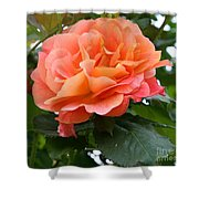 Peachy Elegance Shower Curtain