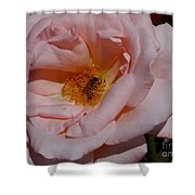 Peachy Petals And Bee Shower Curtain