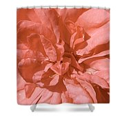 Peachy Pink Jasper Rose Shower Curtain