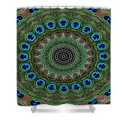 Peacock Abstract Shower Curtain