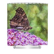 Peacock Butterfly Inachis Io On Buddleja Shower Curtain