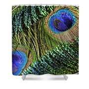 Peacock Eye And Sword Shower Curtain