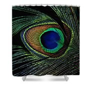 Peacock Eye Shower Curtain