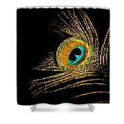 Peacock Feathers 7 Shower Curtain