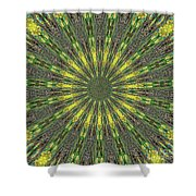 Peacock Feathers Kaleidoscope 5 Shower Curtain