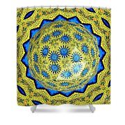 Peacock Feathers Under Polyhedron Glass 3 Shower Curtain