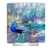 Peacock In The Mist Shower Curtain