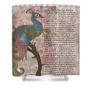 Peacock Pointing To Desiderata Shower Curtain
