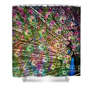 Peacocked Shower Curtain
