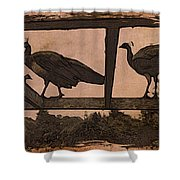 Peahens Shower Curtain
