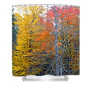 Peak And Past Foliage Shower Curtain