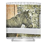Peanut Shower Curtain