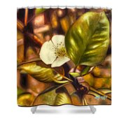 Pear Blossom Shower Curtain