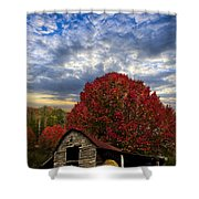 Pear Trees On The Farm Shower Curtain