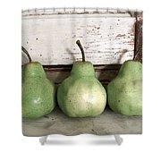 Pear Trio Shower Curtain