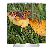 Pearl Crescent Butterfly On Yellow Leaf Shower Curtain
