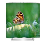Pearl Crescent Butterfly Square Grass Shower Curtain