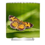 Pearl Crescent Notecard Shower Curtain