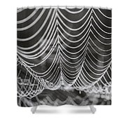 Pearl Necklace Shower Curtain