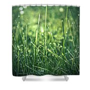 Pearl Pit Shower Curtain