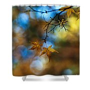 Pearlescent Acers Shower Curtain