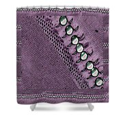 Pearls And More Pearls Shower Curtain