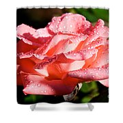 Pearly Petals Shower Curtain