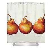 Pears Shower Curtain by Annabel Barrett