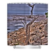 Pebble Beach 4 Shower Curtain