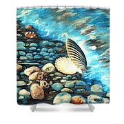 Pebble Beach And Shells Shower Curtain