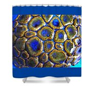 Pebbles Marbled Blue Shower Curtain