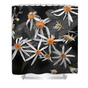 Pedals And Pollen Shower Curtain