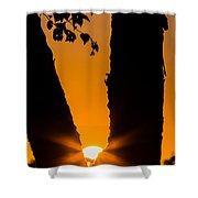 Peeking Sun Shower Curtain
