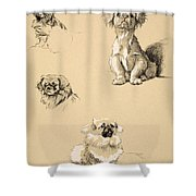 Pekes, 1930, Illustrations Shower Curtain