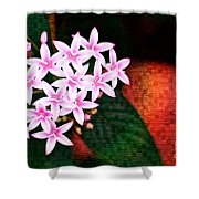 Pelargonium Graveolens II Shower Curtain