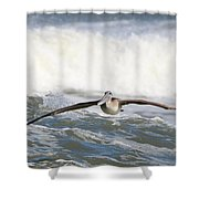 Pelican 4057 Shower Curtain