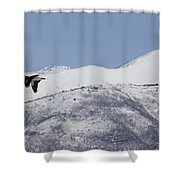 Pelican And Mountains Shower Curtain