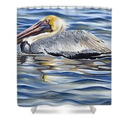 Pelican At Cedar Point Shower Curtain